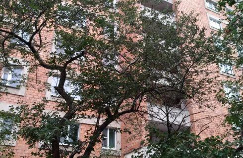2-komnatnaya-ul-marshala-rokossovskogo-d-4 фото