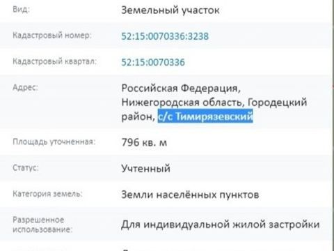 derevnya-skipino-gorodeckiy-rayon фото