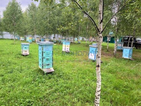 kottedzh-selo-chernuha-arzamasskiy-rayon фото