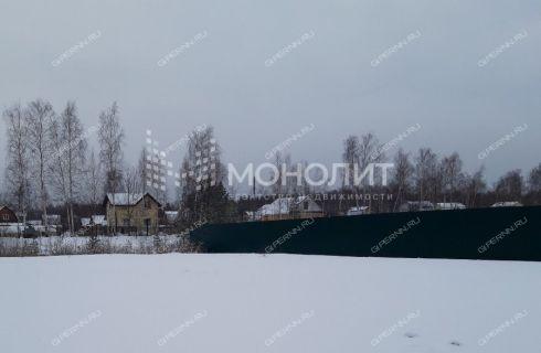 rabochiy-poselok-bolshoe-kozino-balahninskiy-rayon фото