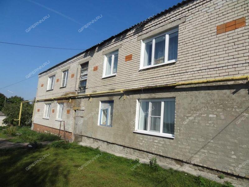 трёхкомнатная квартира на Центральная дом 70 село Белозерово