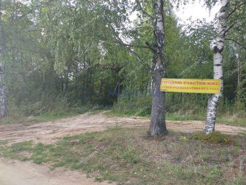 derevnya-gubcevo-gorodskoy-okrug-chkalovsk фото